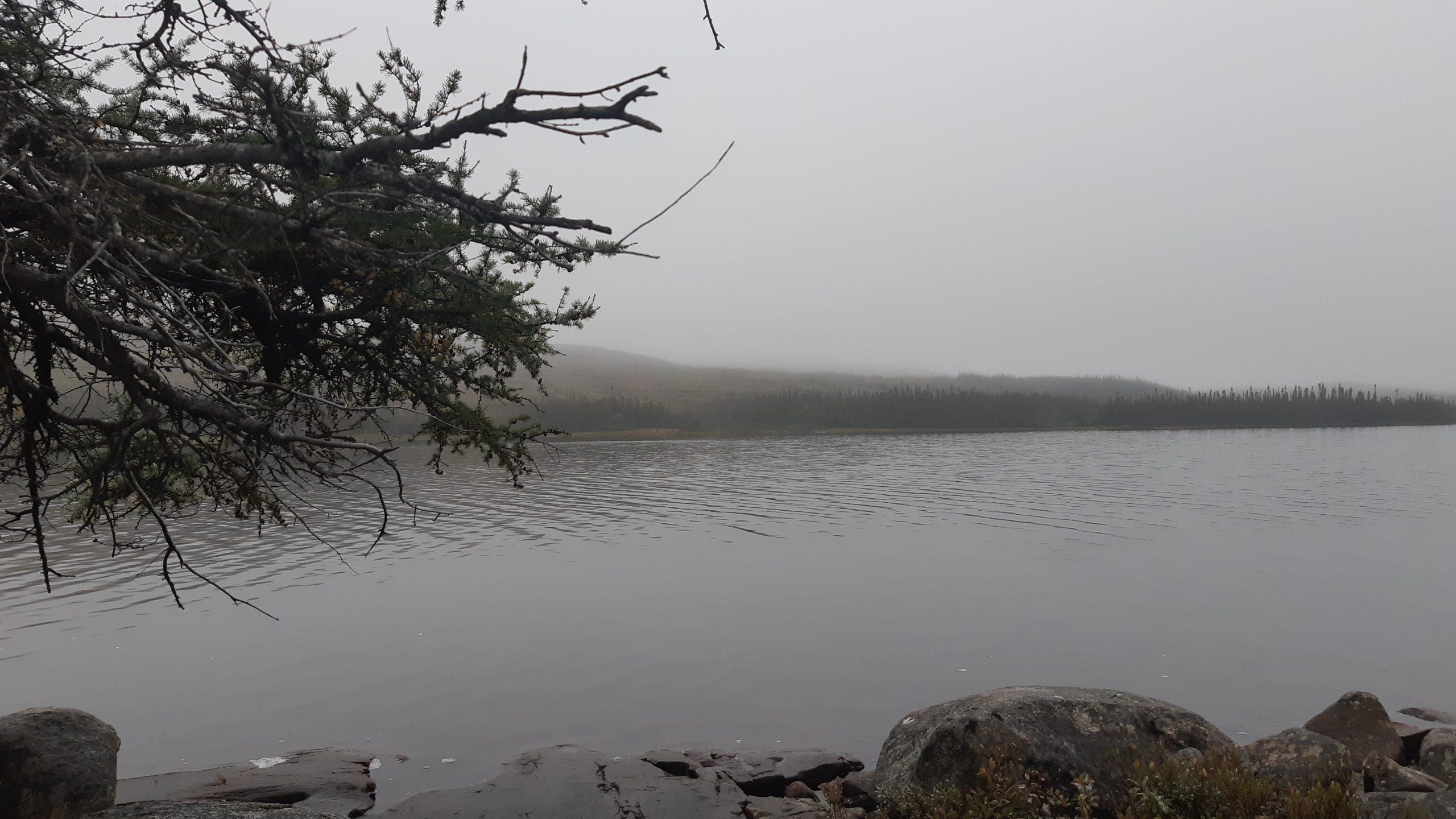 morning-mist-2